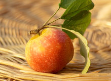 Apple on a wicker basket Royalty Free Stock Images