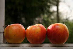 Apple window Stock Image
