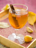 Apple wine eller cider royaltyfri fotografi