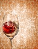 An Apple in wine glass with a water splash. royalty free stock image