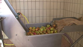 Apple wine press stock video footage