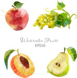 Apple, winogrono, brzoskwinia, bonkreta Obraz Royalty Free