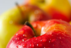 Free Apple With Drop Dew Stock Photography - 9056892