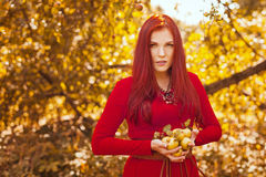 Apple woman. Very beautiful ethnic model eating red apple in the park. Stock Photos