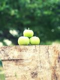 Apple wood stock images