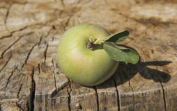 Apple on wood Royalty Free Stock Photos