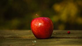 Apple on the wooden table in backyard, apple with blurred background stock photo
