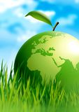 Apple world. Beautiful illustration of green globe on green field Stock Photos