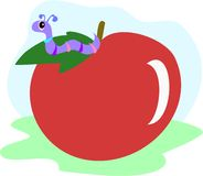 Apple Worm Stock Image