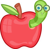 Apple Worm Images stock