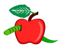 Apple with worm Stock Photography