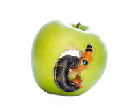 Apple Stock Image