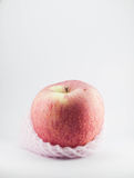 Apple wrapped with foam on white background. Stock Image