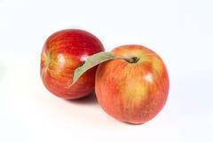 apple wycinek zawiera cyfrowej sieci ilustracyjnego gradientowego ścieżki white Obraz Royalty Free