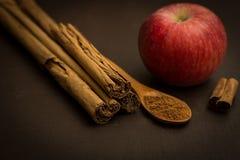 Apple y canela Foto de archivo libre de regalías