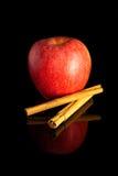 Apple y canela Imagen de archivo libre de regalías