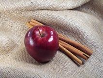 Apple y cinamomo Foto de archivo libre de regalías