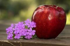 Apple y flores imágenes de archivo libres de regalías