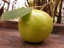 Apple y hoja Imagen de archivo libre de regalías