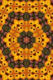 Apple y mandala del gardenia Imagen de archivo libre de regalías