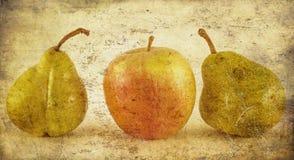 Apple y peras en grunge Fotografía de archivo