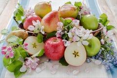 Apple y peras en la composición de la bola Imágenes de archivo libres de regalías