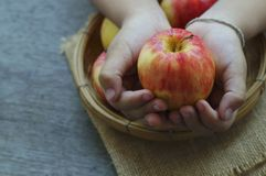 Apple in younger hand concept in giver and donate food. In dark tone stock photography