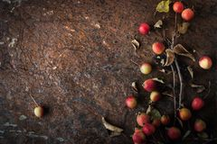 Apple z gałązkami i liśćmi na brown kamiennym tle horyzontalnym Zdjęcie Stock