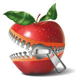 Apple zipper Royalty Free Stock Images