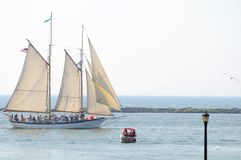 appledore iv statek wysoki Obraz Royalty Free