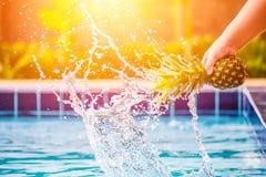 Applepine z wodnym pluśnięciem Zdjęcia Royalty Free