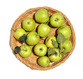 Apples 0014. Freshly picked small green apples, placed in a straw basket Royalty Free Stock Photos