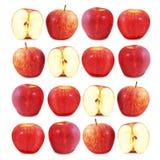 Apples 1 Stock Photos