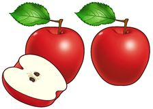 Apples. A digital illustration of two and a half apples Royalty Free Stock Images