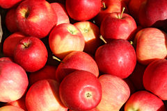 Apples. Closeup of multiple red apples for sale at an outdoor market Stock Photo