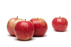 Apples. Four red apples on a white background Stock Photography