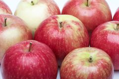 Apples. A few red apples on a white background, close-up Royalty Free Stock Images