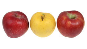 Apples. Three red and yellow apples in a row isolated on white background Royalty Free Stock Images