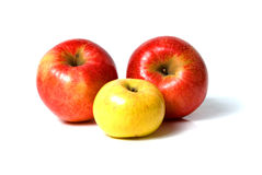 Free Apples Stock Photography - 12091662
