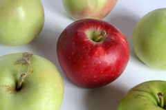 Apples. Red apple, yellow apple Royalty Free Stock Image