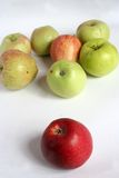 Apples. Yellow apple, red apple Stock Image