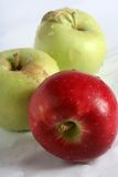 Apples. Red apple, yellow apple Royalty Free Stock Photos