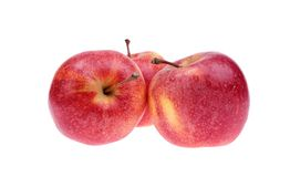 Apples. Isolated on a white background Royalty Free Stock Photo