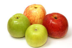 Apples. Four apples , different colors and size on white background Royalty Free Stock Photos