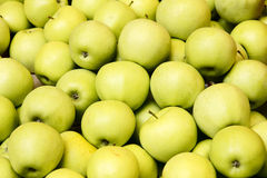 Apples. The close-up of fresh apples Royalty Free Stock Photos