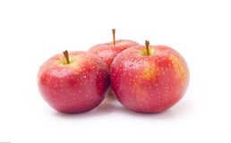 Apples. Three juicy, red apples isolated on white background royalty free stock images