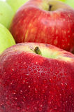 Apples. Closeup of some delicous and fresh apples Royalty Free Stock Photo