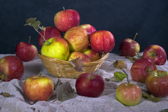 Apples. Still-life with apples on a sacking Stock Image