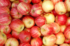 Apples. Closeup of multiple red apples for sale at an outdoor market Stock Images
