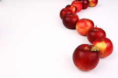 Apples Stock Image